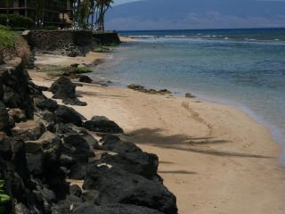 Fantastic Remodeled Oceanfront one Bedroom Condo! - Napili-Honokowai vacation rentals