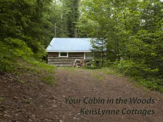 Hide-A-Way Lake Front  - 2 Bedroom Cottage - NOW A - Bancroft vacation rentals