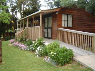 Karangahake cottage - Waihi vacation rentals