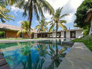Seminyak Bali Villa CocoGroove 3-bdrm mod luxury - Canggu vacation rentals