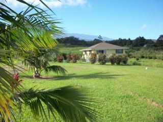 Ocn/Mtn View Lodge. Ideal Island Retreat. Private. - Haiku vacation rentals