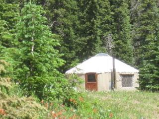 The Pass Creek Yurt - South Fork vacation rentals