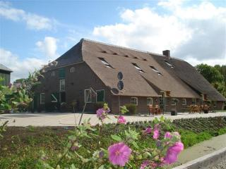 Gouda,middle of Holland  farmhouse for 15 persons - Utrecht vacation rentals