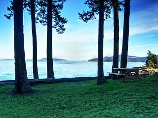 WATERFRONT! - (Lodge at Pebble Beach) - San Juan Island vacation rentals