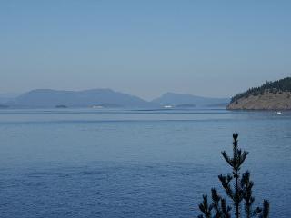 BEST VALUE! WATERFRONT! PET FRIENDLY! - (Madrona House) - Friday Harbor vacation rentals