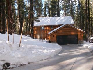 LUXURY CABIN,1/2 HR TO KRKWD SKI/LAKE TAHOE, 5 MIN - Markleeville vacation rentals