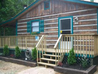 Charming Cabin on 2 Secluded Acres, FP, HT, WIFI - Cosby vacation rentals