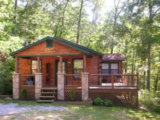Luxury 2 Bd Cabin on 4 Private Wooded Acres - Sevierville vacation rentals