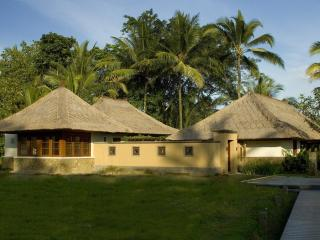 RICE FIELD AND JUNGLE VIEWS - Ubud vacation rentals