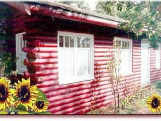 Classic Antique Cabin in Cambria, ocean and forest - Cambria vacation rentals