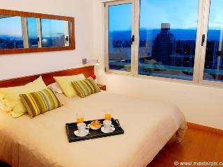 Great Apt in Palermo  GYM - POOL - WIFI - (P17) - Buenos Aires vacation rentals