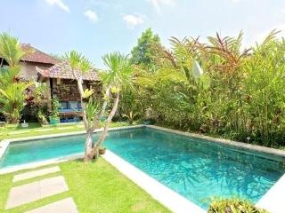 Villa Semua Suka 3 Bedroom with Bungalow in the Ricefields of Ubud - United States vacation rentals