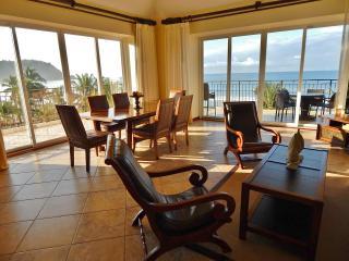Vista Las Palmas Pure Oceanfront Luxury - Los Suenos vacation rentals