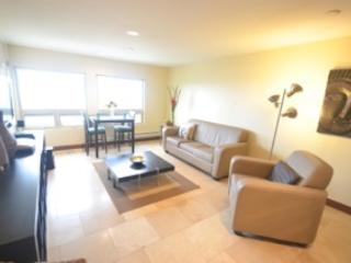 Ocean View Condo in the Village of La Jolla - La Jolla vacation rentals