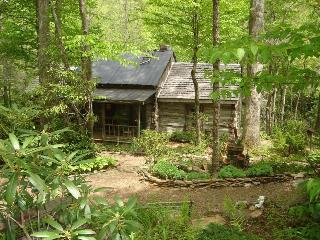 Rustic Log Cabin on Rock Creek-Very Private - Little Switzerland vacation rentals