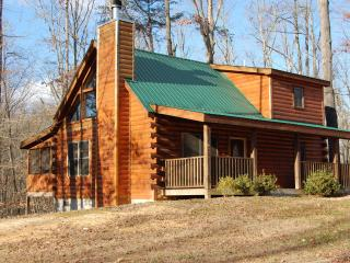 Quiet Retreat Cabin Near Douglas Lake - Dandridge vacation rentals