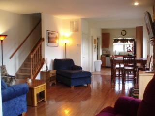 Luxurious, Cozy Mountain Retreat. - Hunter vacation rentals