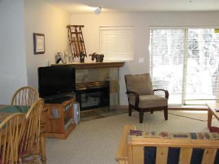 LARGE One Bedroom in Village North - Whistler vacation rentals