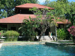 Villa Bukit Kaja Kauh, villa with private pool - Negara vacation rentals