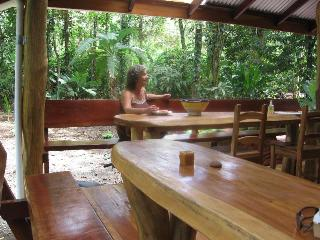 Unique Jungle-beach Home sleeps nine - Limon vacation rentals