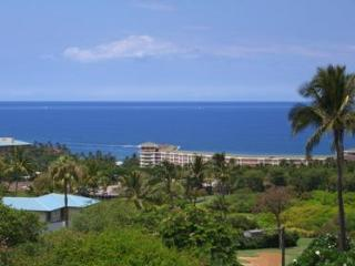 Views Views Views Ekolu #1108 Remodel - Wailea vacation rentals
