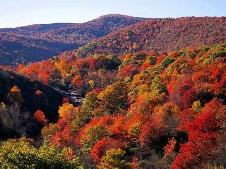 Fall Colors Special! Only $899/Weekend $1899/Week - Cashiers vacation rentals