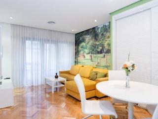 Studio DINO, near the Prado Museum - Madrid vacation rentals