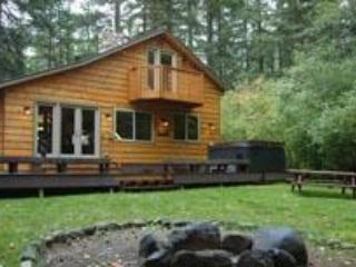 Lazy Bears Creekside Cabin at Mt. Rainier - Mount Rainier National Park vacation rentals