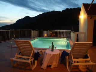 Villa Urlovic in Dubrovnik area - Gruda vacation rentals