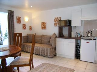 STUDIO TILLEUL - Loire Valley vacation rentals