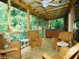 Creekside's porch & hot tub - White River Cabin for 6, hot tub, fireplace, nice! - Norfork - rentals