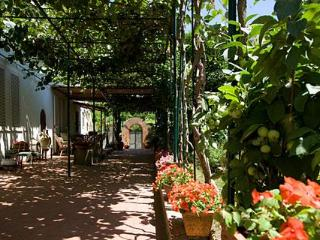 B&B Villa Dei Fiori 5 minutes from - Capri vacation rentals