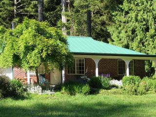 Cozy Cattail Cottage Coastal Estuary Woodland Home - Lakeside vacation rentals
