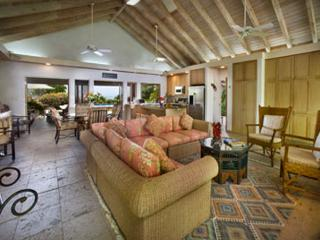 Sea Fans - British Virgin Islands vacation rentals