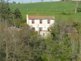 Rental The Barn Owl's Barn, Loire's Canyon - Auvergne vacation rentals
