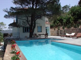 Private Villa for Group on Greek Island of Skopelos - Villa Glyfoneri - Votsi vacation rentals