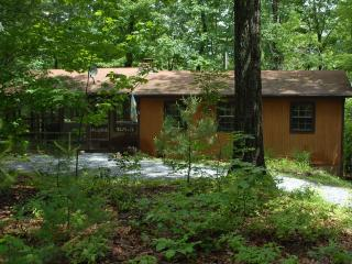 Secluded Cozy Mountain Cabin with Hot Tub - Luray vacation rentals