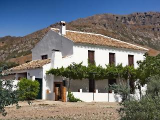 Gran Casa Rural en el centro de Andalucia - Alcaudete vacation rentals