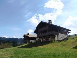 Chalet Amitie - Morzine-Avoriaz vacation rentals