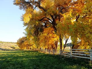 Canyon of the Ancients Guest Ranch near Mesa Verde - Towaoc vacation rentals