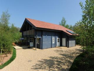 Robins Eco Lodge, Mill Meadow, Taunton, Somerset - Watchet vacation rentals