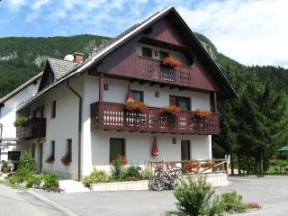 BOHINJ valley - NA VASI Apartments - Zgornje Gorje vacation rentals