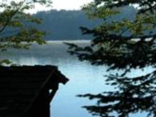 Camp Driftwood - Indian Lake vacation rentals