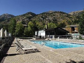WALK TO LIFTS ,  2BR/1ba, Ht tub, pool, tennis - Wyoming vacation rentals