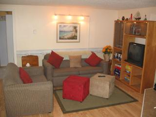 Wisconsin Dells 2 Bdrm Vacation Rental - Lakefront - Lake Delton vacation rentals