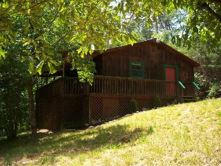 Cozy 2 Bedroom, Private Cabin in the Mountains !! - Gatlinburg vacation rentals