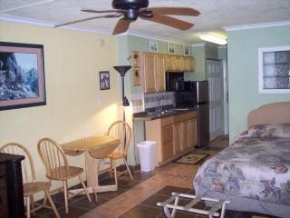 Direct Oceanfront Fun ! - Daytona Beach vacation rentals