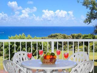 Keiha's Paradise - Luxurious Ocean & Mountain View - Princeville vacation rentals
