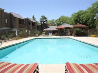 Villa Vita - Image 1 - Scottsdale - rentals