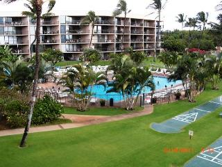 Fabulous Renovated 1 Bedroom/Penthouse Deluxe - Kihei vacation rentals